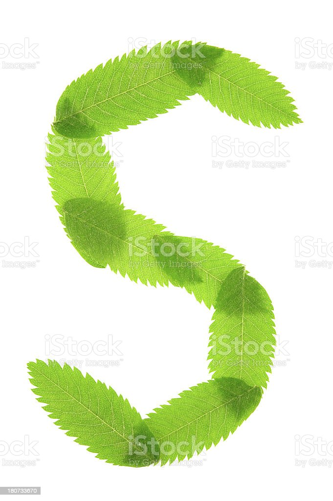 Letter S royalty-free stock photo