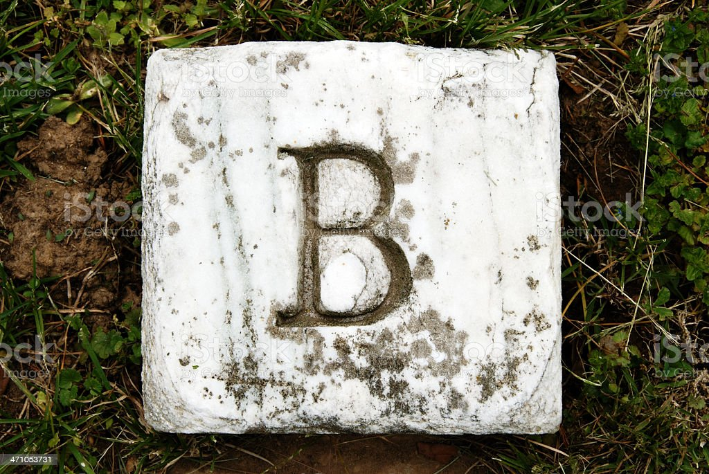 B - Letter Series royalty-free stock photo