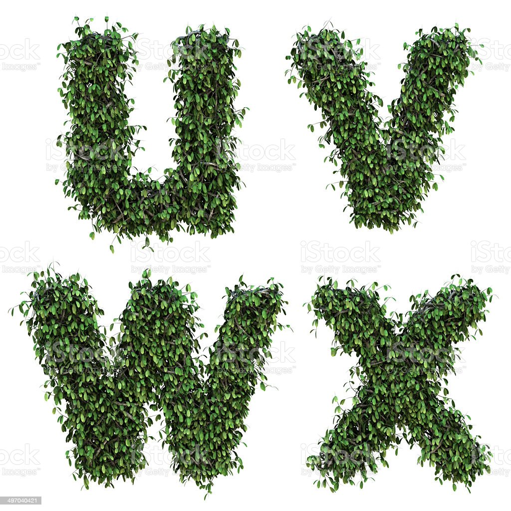 Letter u v w x stock photo