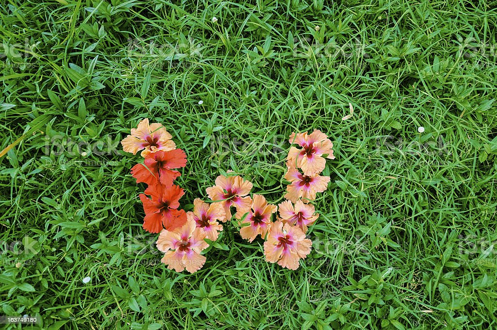 Letter 'W' made from pretty flowers. royalty-free stock photo