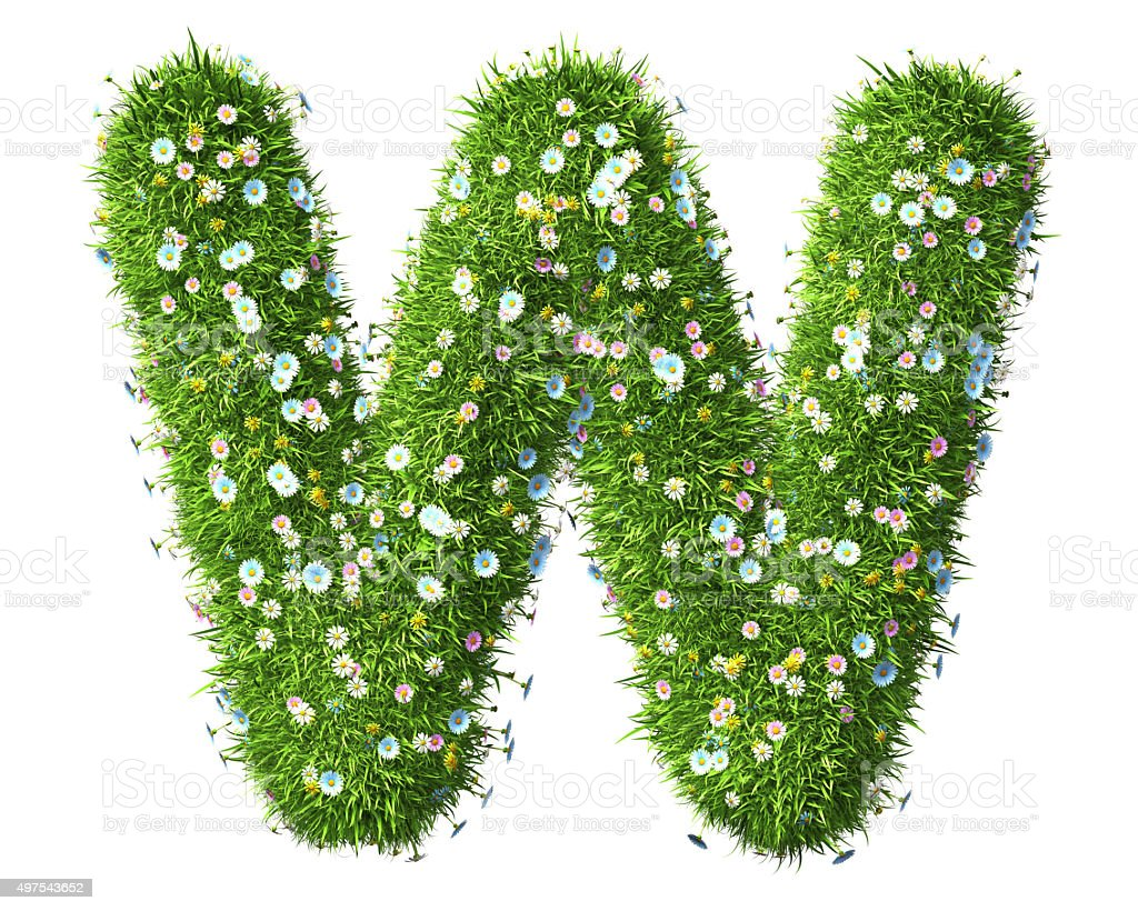 Letter W Of Grass And Flowers stock photo