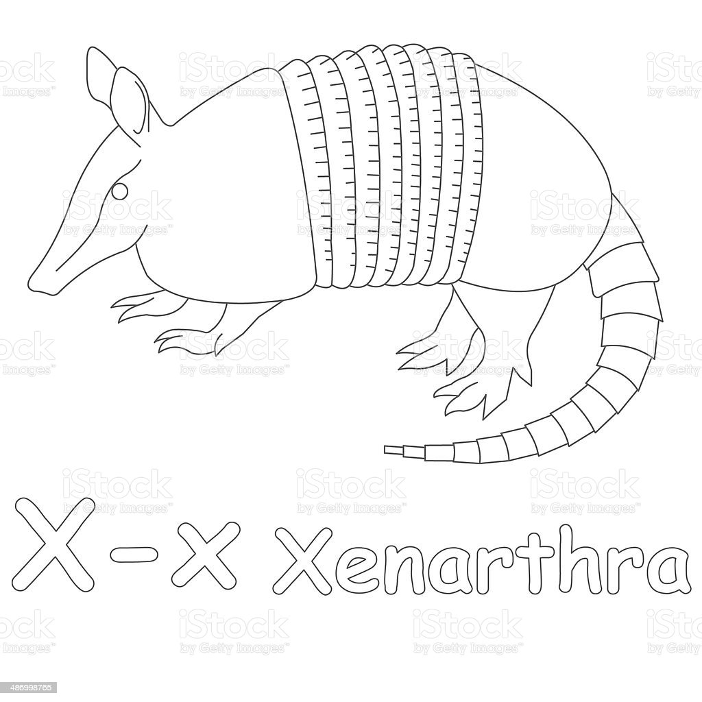 Letter X For Xenarthra Coloring Page stock photo 486998765 iStock