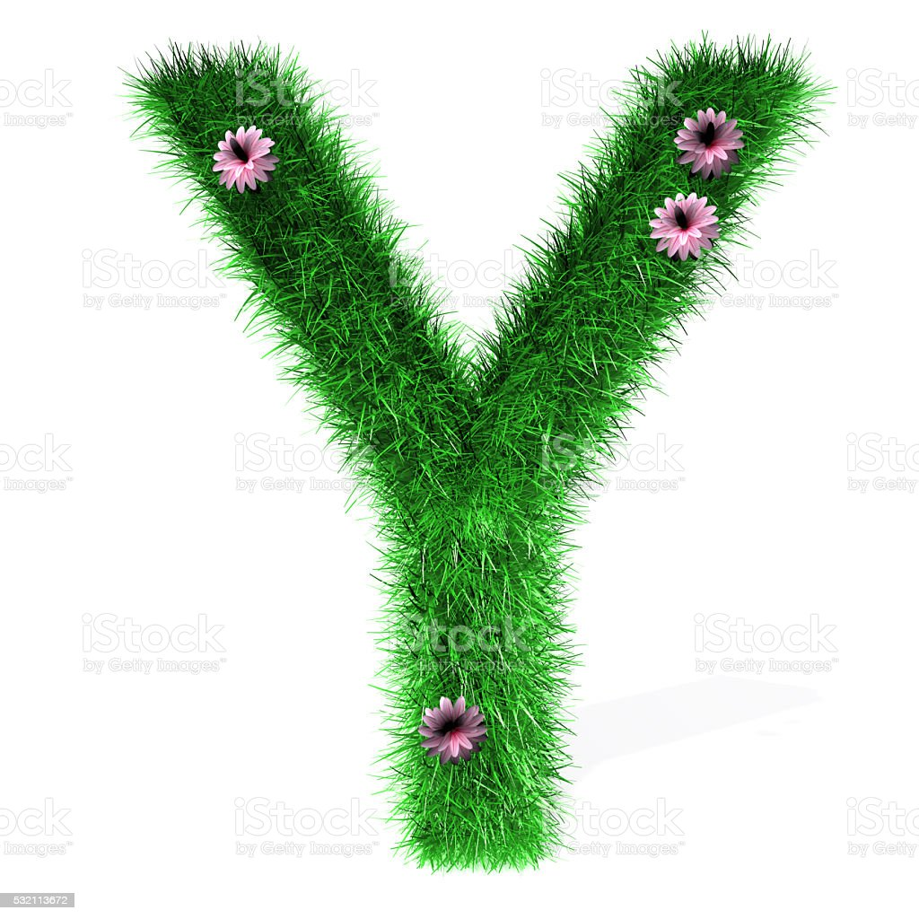 Letter Y of Grass And Flowers stock photo