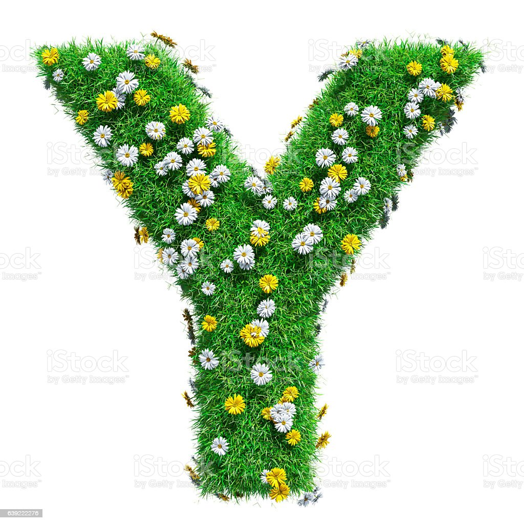 Letter Y Of Green Grass And Flowers stock photo