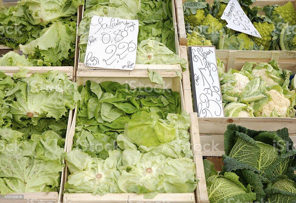Lettuce, abundance royalty-free stock photo