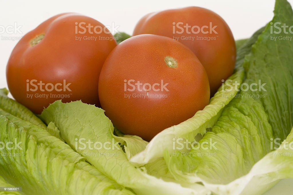 Lettuce and tomatoes royalty-free stock photo