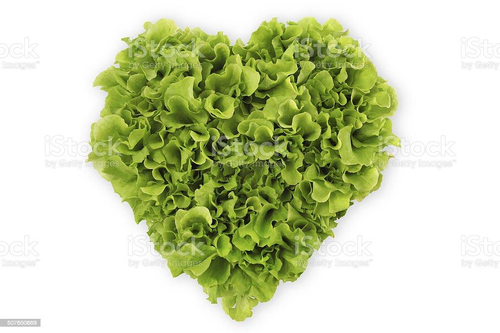 lettuce heart stock photo
