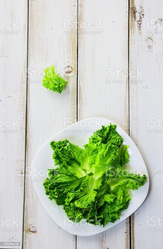 lettuces stock photo
