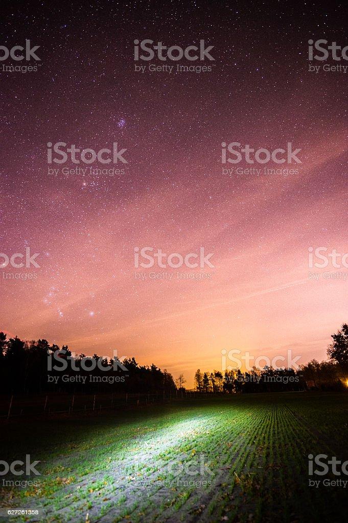 Leuchtenes Feld unter den Sternen stock photo