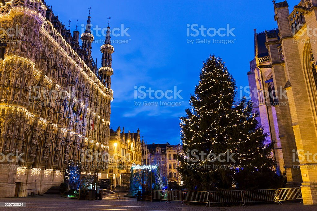 Leuven City Hall and St. Peter's Church in Belgium stock photo