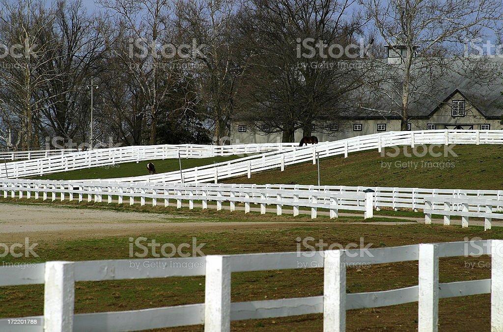 Lexington, KY stock photo