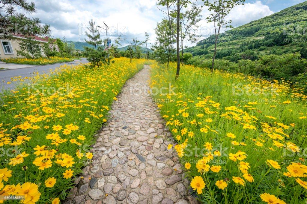 Liaoning Tianqiaogou National Forest Park , Dandong, China stock photo