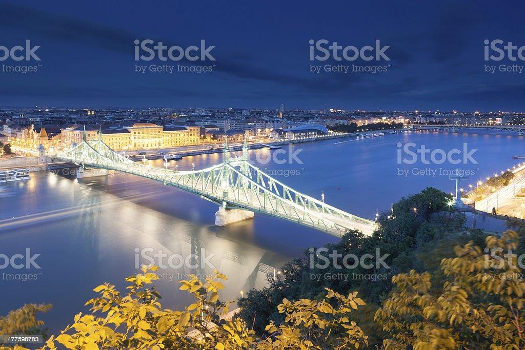 Liberty bridge at night royalty-free stock photo