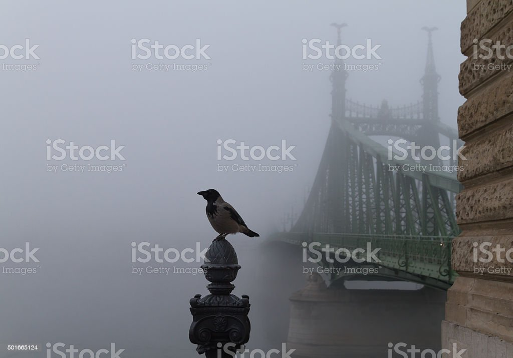 Liberty Bridge in the fog stock photo