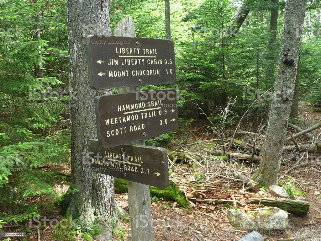 Liberty Hammond forest trial signs on New Hampshire's Mount Chocorua stock photo