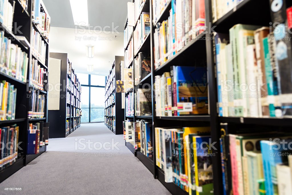 Library book shelf aisles with focus on window with greenery stock photo