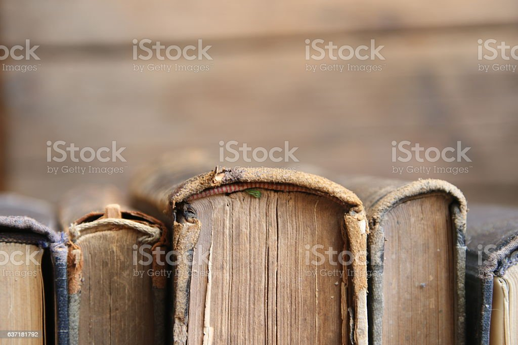 Library concept - Old books, soft focus stock photo