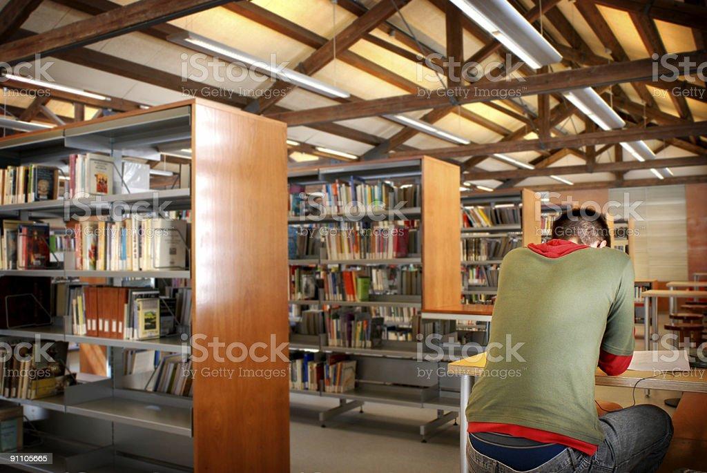 Library royalty-free stock photo