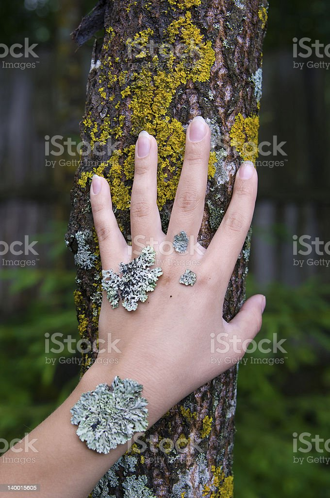 lichen on the hand royalty-free stock photo