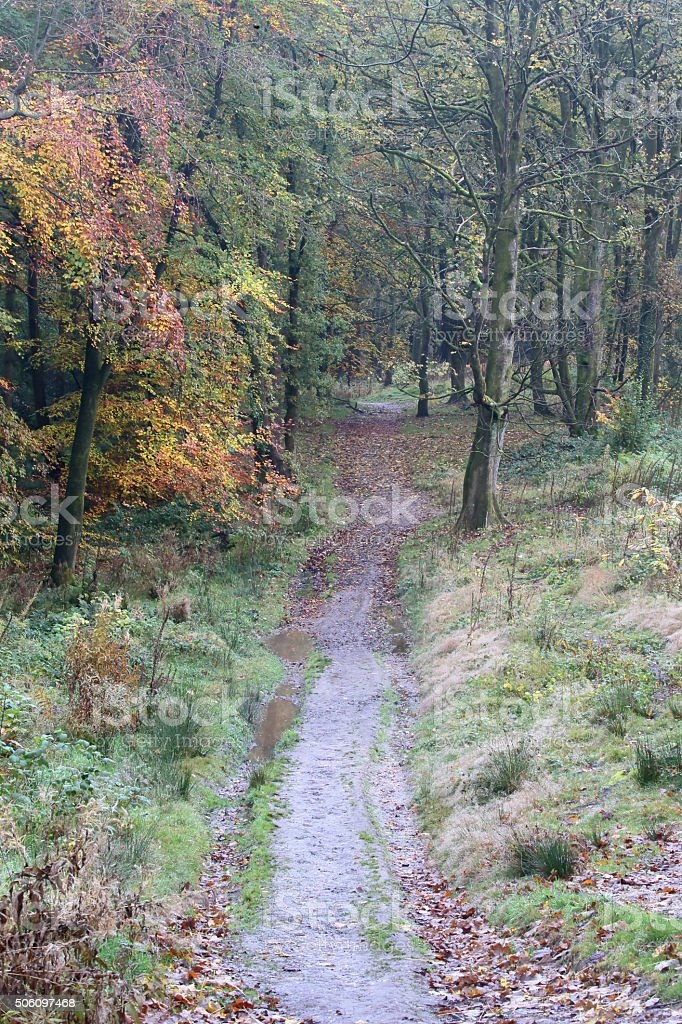 Lickey Hills Country Park stock photo