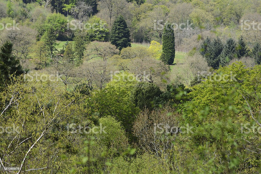 licky hills royalty-free stock photo