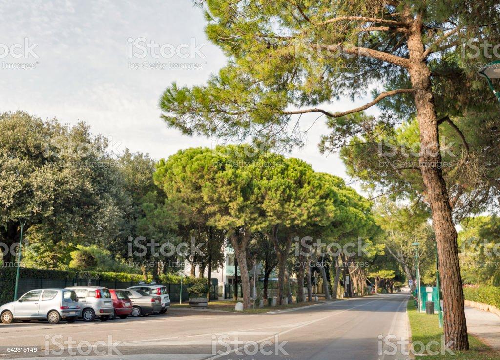 Lido Santa Maria Elisabetta street, Italy. stock photo