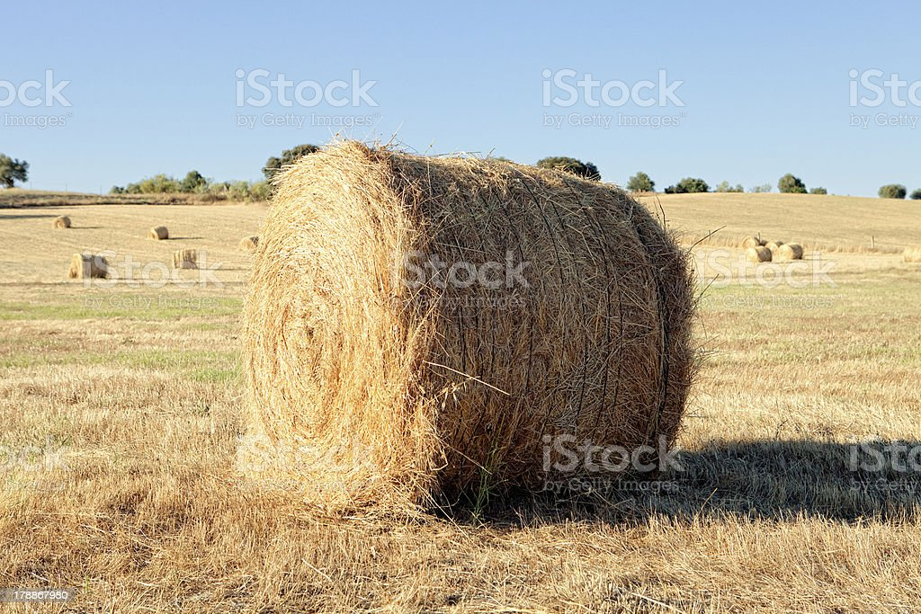 Lie a straw stack royalty-free stock photo