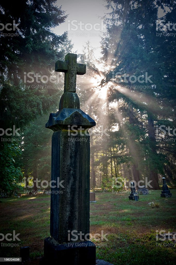 'life and death'  beautiful! stock photo