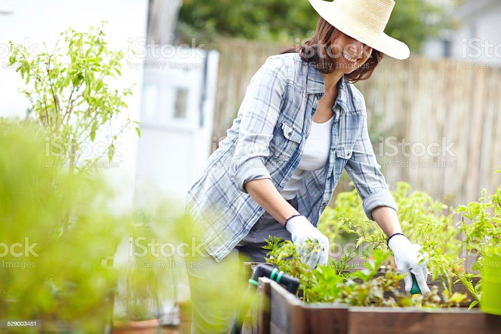 Life begins in a garden stock photo