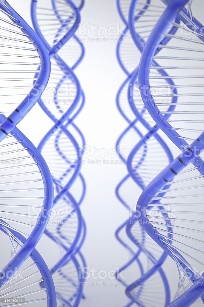 life cycle of dna vector art illustration