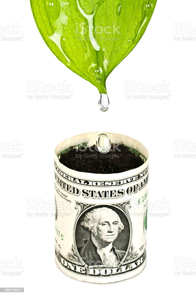 Life for bucket of Dollars royalty-free stock photo