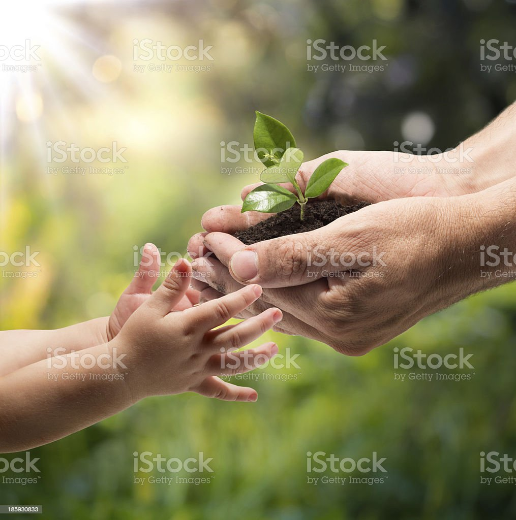 life in your hands - garden stock photo