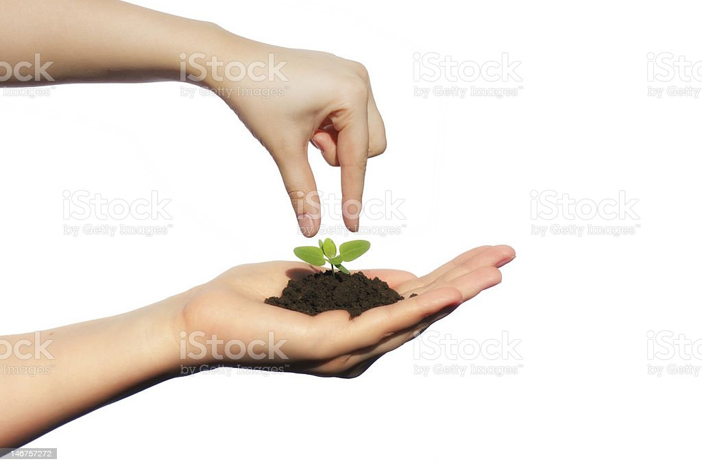 Life in Your Hands royalty-free stock photo