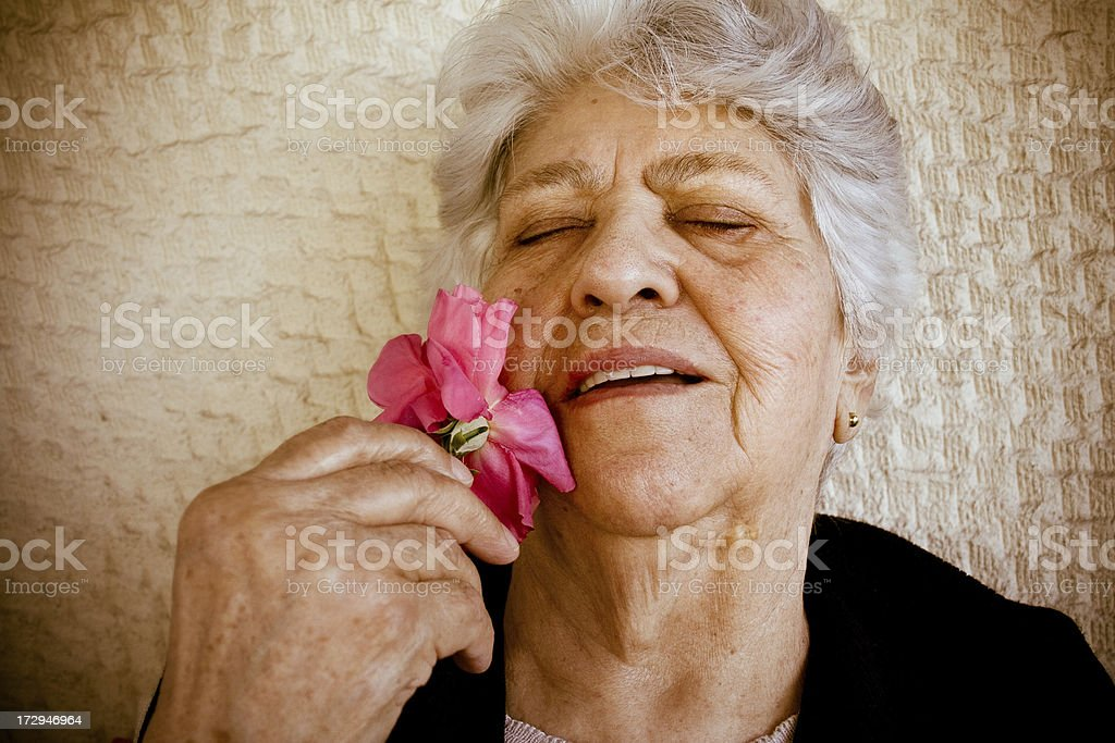 Life is a rose royalty-free stock photo