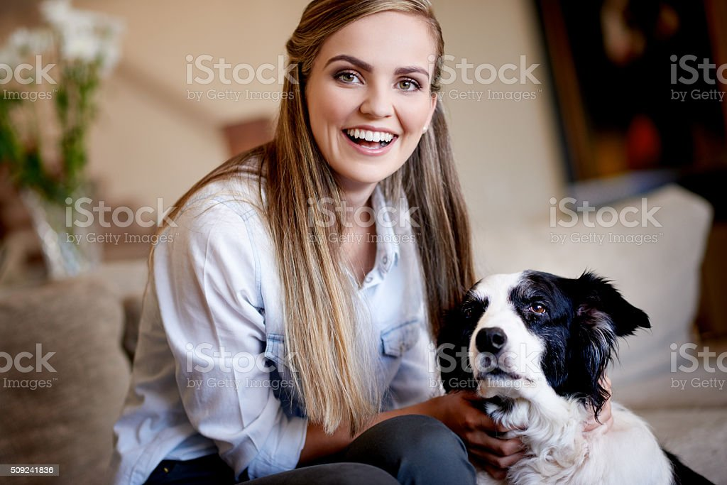 Life is great but dogs make it better stock photo