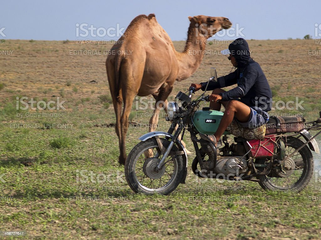 Life of a Steppe Shepherd royalty-free stock photo