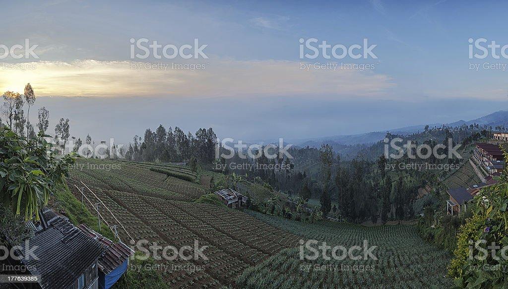 Life on the mountains. stock photo