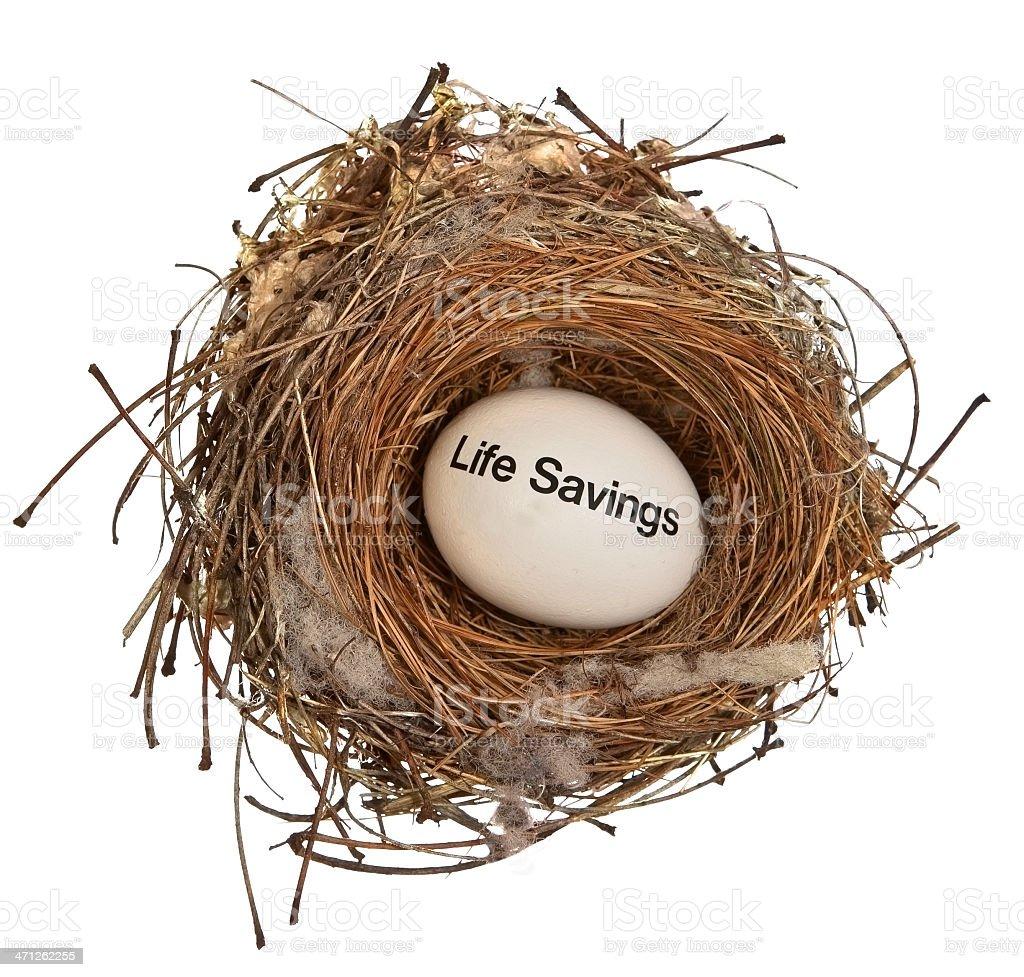 Life Savings Nest Egg royalty-free stock photo