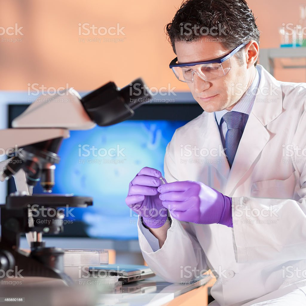 Life scientist researching in the laboratory. stock photo