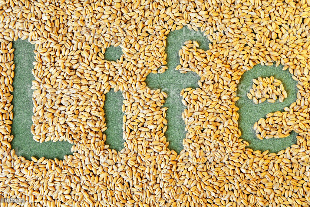 Life sign made of wheat berries royalty-free stock photo