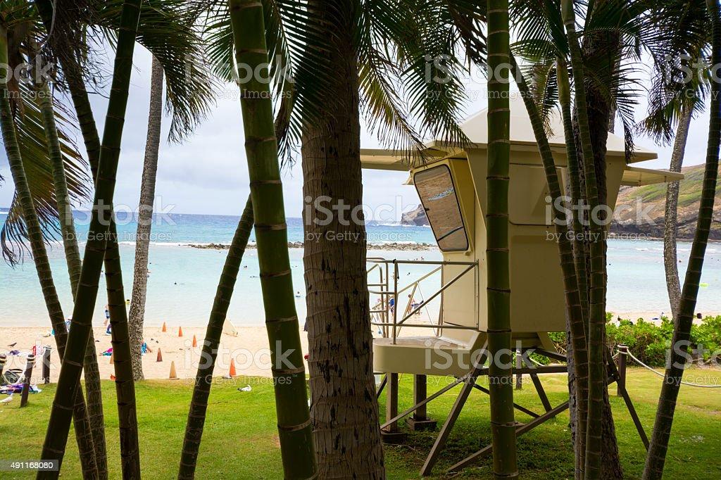 Lifeguard hut and palm trees at Hanauma Bay on Oahu stock photo