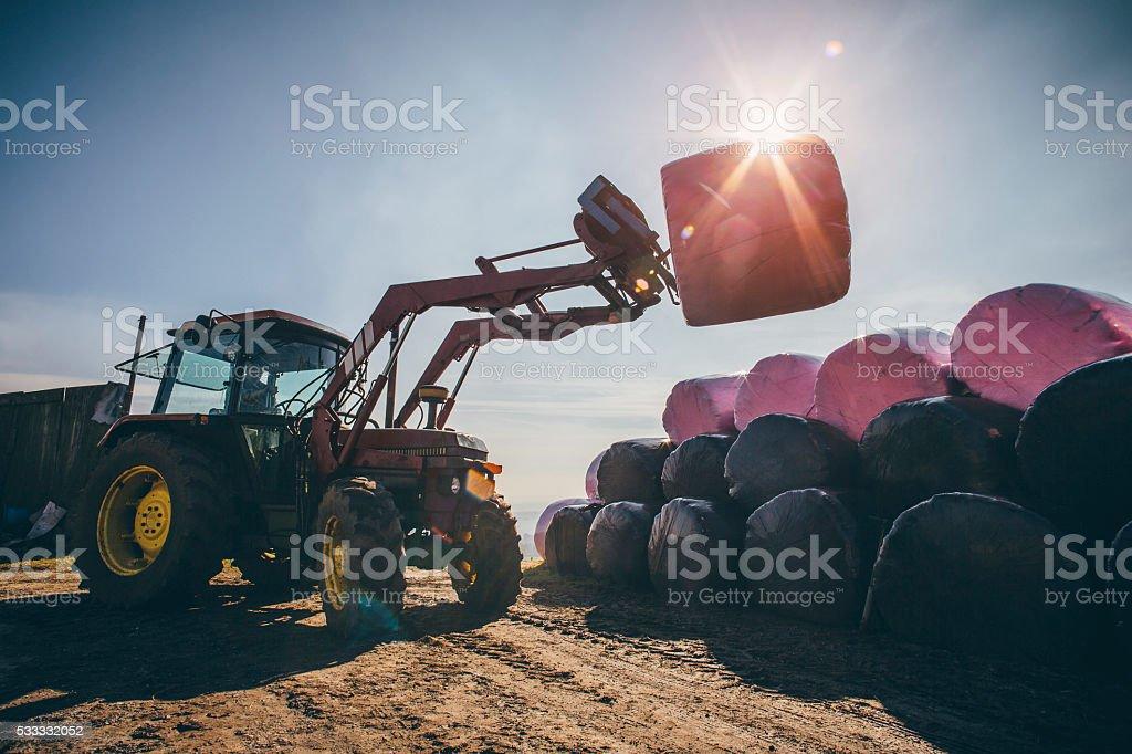 Lifting Silage Bales stock photo