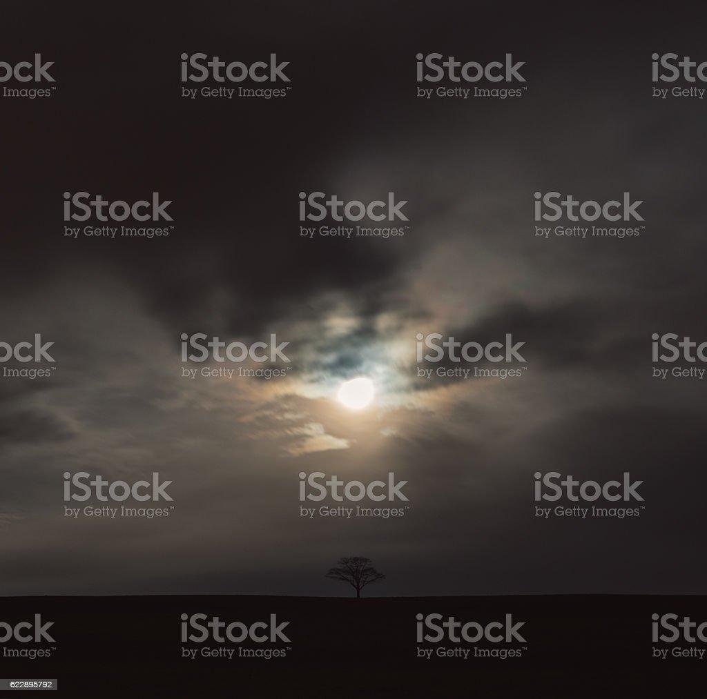 Light and Dark stock photo