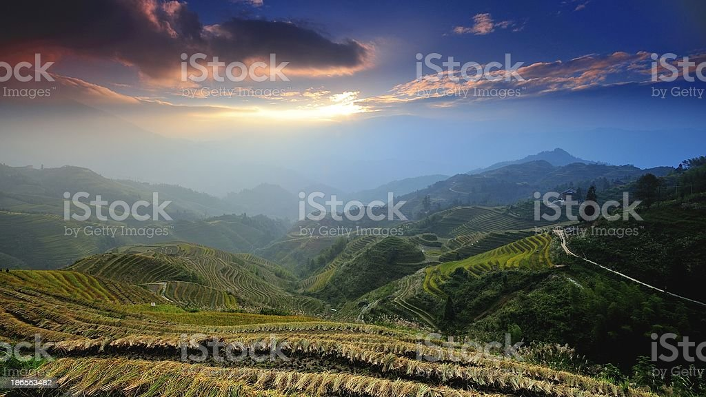 light and shadow of terraced fields in the morning 02 stock photo