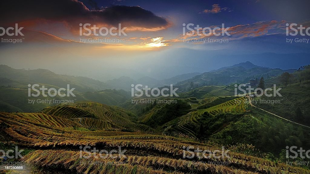 light and shadow of terraced fields in the morning 06 stock photo