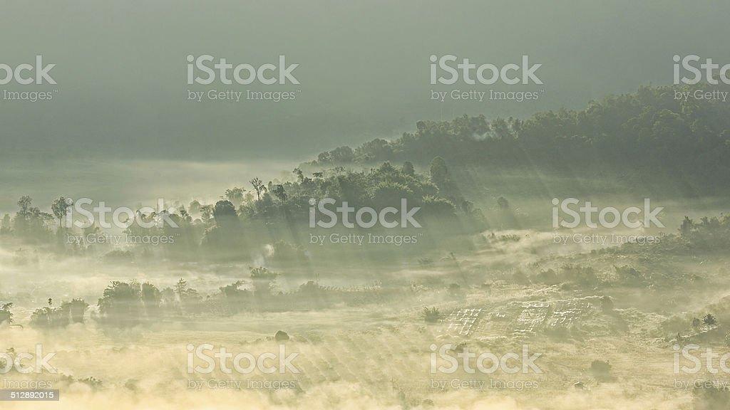 Leichte Balken in Nebel Lizenzfreies stock-foto