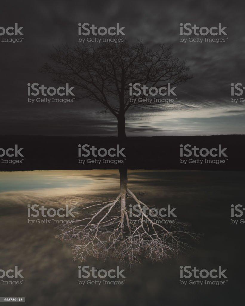 Light Below stock photo