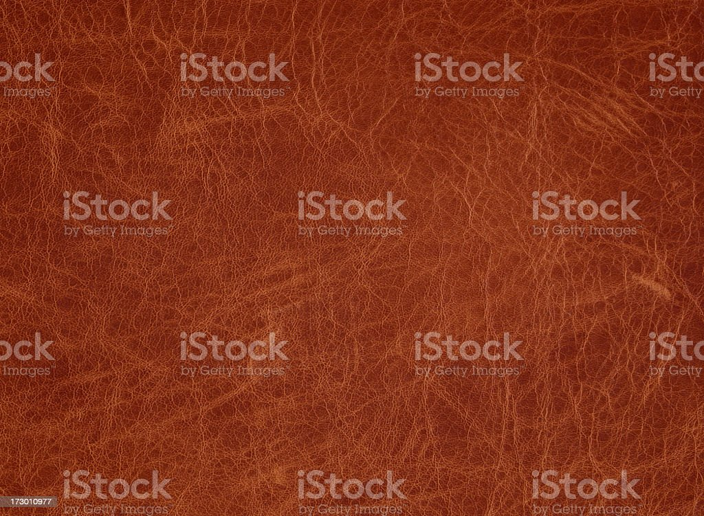 light brown leather with slight vignette royalty-free stock photo