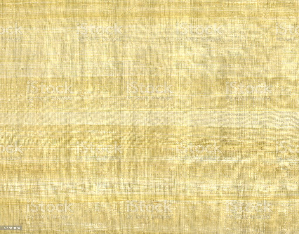 light brown papyrus sheet stock photo