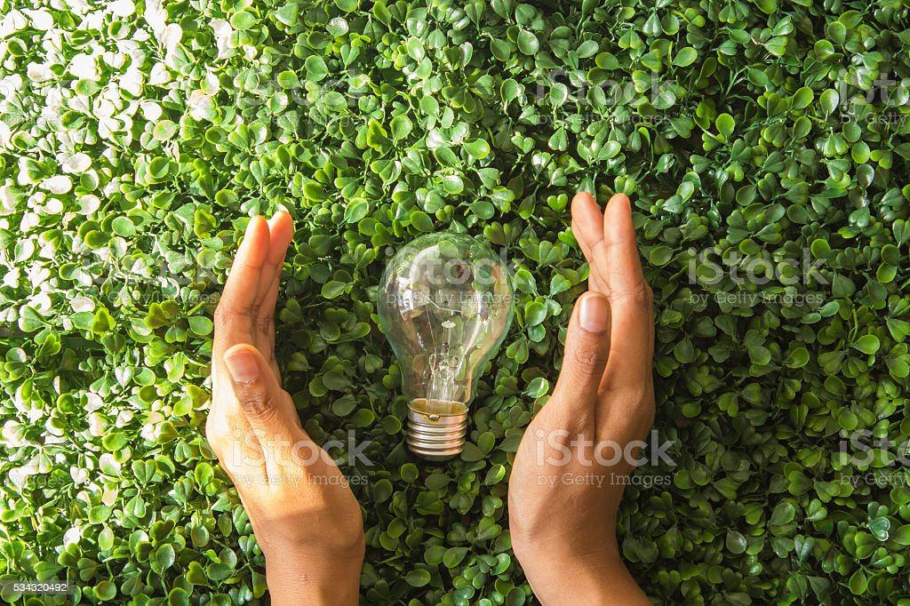 Light bulb and hand with green background stock photo